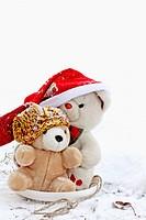 Two Teddy Bears go sledding on a frisbee on a cold January morning