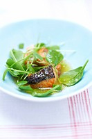 Grilled salmon salad with citrus fruit french dressing