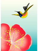 A hummingbird flying over a flower