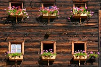 Flower decorated windows at farmhouse, Oetztal range, South Tyrol, Italy