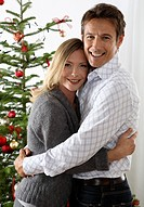 Mate, embrace, semi_portrait, christmas_tree,