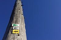 Log, signs, direction sign,