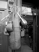 -Boxing & Tennis-