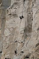 Rock Climber, El Capitan, Yosemite National Park,