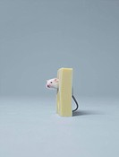 Mouse sticking head out of cheese