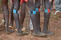 Legs of tribal Hamer men with the jumping of the bull ceremony Ethiopia Africa
