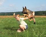 German Shepherd dog jumping over womanrestrictions: animal guidebooks