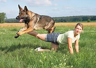German Shepherd dog jumping over legrestrictions: animal guidebooks