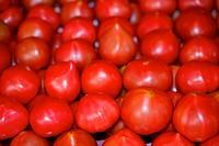 Tomatoes, full frame