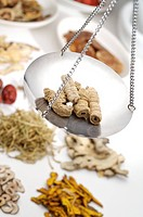 Chinese herbal medicine and scale, close_up