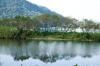 Natural scenery in Wulai, Taipei, Taiwan