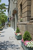 Modern buildings with potted plants on walkway
