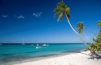 Dominican Republic _ East Coast _ Bayahibe