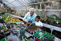 African grandmother gardening with grandson