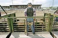 A bullrider at a rodeo