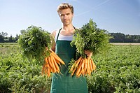 Farm worker holding up freshly picked carrots