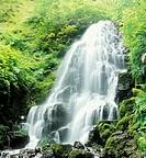 Fairy Falls, Columbia River Gorge, Oregon, USA
