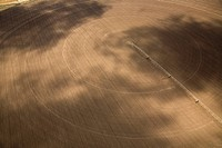 Aerial photograph of a polwed field in the Western Galilee