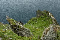 Photograph of a cliff in Ireland