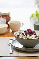Granola and fruit in bowl