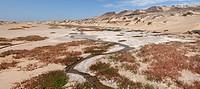 Creek, Skeleton Coast Camp, Wilderness Safaris, Skeleton Coast, National Park, Kaokoland, Kunene Region, Namibia, Africa, Travel, Nature