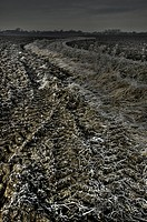 A ploughed field in Suffolk with frost
