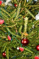 Christmas tree Sweden.