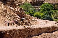 Egypt, Sinai Peninsula, Saint Catherine, Djebal Valley