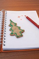 still life of christmas cookie on diary
