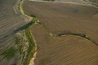 Aerial photograph of the plowed fields of the Northern Negev