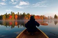 Man, Autumn, Canoe, Kahshe Lake, Muskoka, Ontario