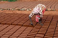 Brick making, worker finishing raw bricks, Tamil Nadu, India