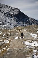 A Wanderer In The Italian Alps.