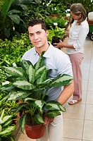 Man holding a potted plant in a greenhouse