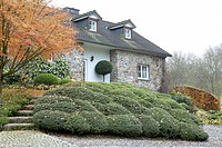 Country house with buxus garden