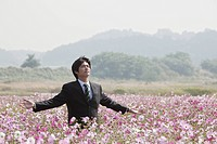 businessman standing amongst cosmos flowers in field
