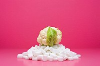 Food concept, fresh cauliflower on top of pile of sugarcubes