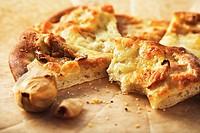 Partially Eaten Rustic Roasted Garlic Pizza