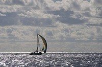 Sailboat in the sea, Gustavia, St. Barthelemy, Guadeloupe