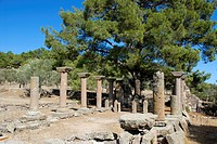 Columns and foundations, remains of an early Christian basilica under a pine tree, Halinadou, Chalinados, Lesbos, Aegean Sea, Greece, Europe