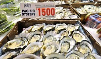 Pacific Oysters, Sydney Fish Market, Sydney, New South Wales, Australia