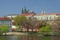 Prag Dom _ Prague cathedral 03