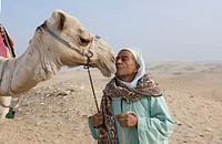 Cameleer kissing his camel, camel lying in sand, desert near Cairo, Egypt, Africa