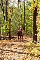 Cleveland, Ohio - A horseback rider on a bridle trail in the Rocky River Reservation Metropark