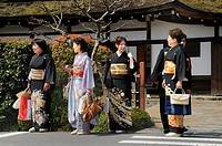 Japanese women in kimonos visiting the Kamigamo shrine in Kyoto, Japan, Asia