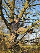 boy climbing onto a tree