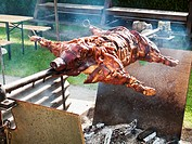 Suckling pig on a barbecue