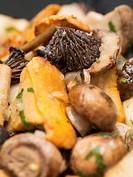 Mixed mushroom stir_fry