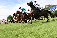 Horse racing, shortly after the start, Germany