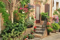 front door decorated with plants and flowers, France, Provence, Grimaud